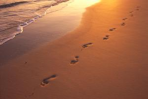 footprints-dana-edmunds